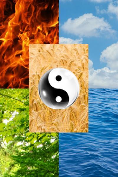Foto mit Feuer Wasser Holz Himmel Getreide und Yin Yang Zeichen